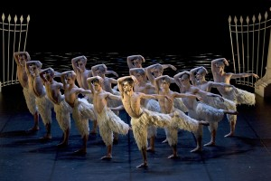 The company in Matthew Bourne's Swan Lake